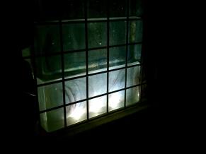 ガビオスガラスブロックとタカショーグランドライト4型 白色光