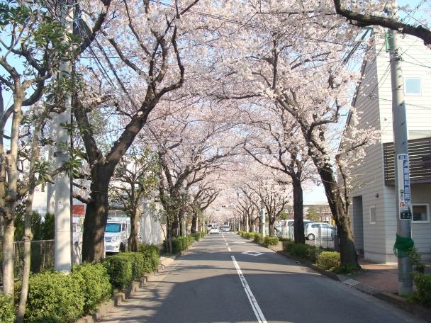 関東中央病院前140331