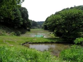 湧水と池と田