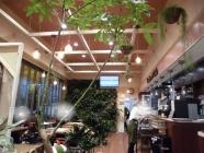 タカショー カフェ