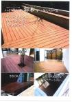 彩木カタログ01