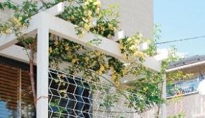 パーゴラポーチと植栽