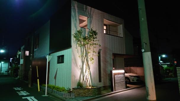 杉並区 ライトアップ (1) /